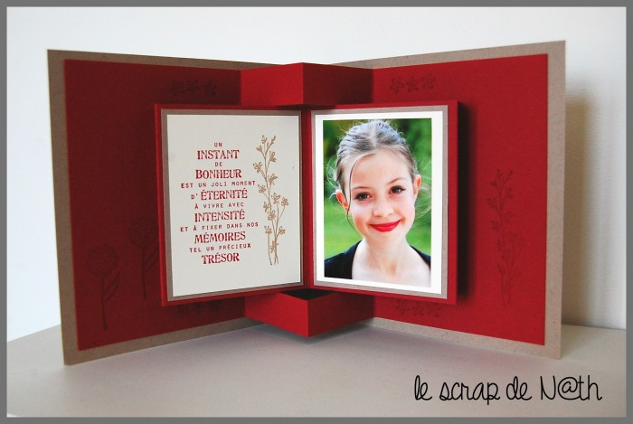 carte ou cadre le scrap de n th